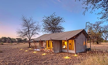 UBUNTU CAMP (ASILIA AFRICA)